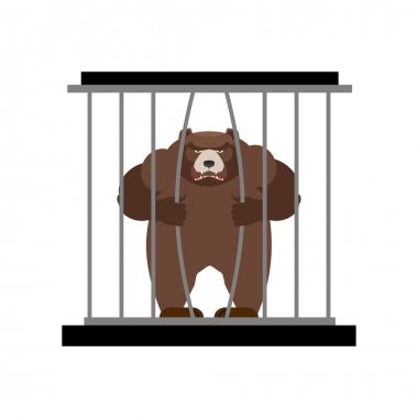 Bear in Zoo cage. Strong Scary wild animal in captivity. Large g