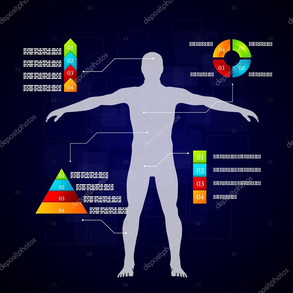 Medicine Infographics Schematic Description Of The Human Body Diagram Stock Vector