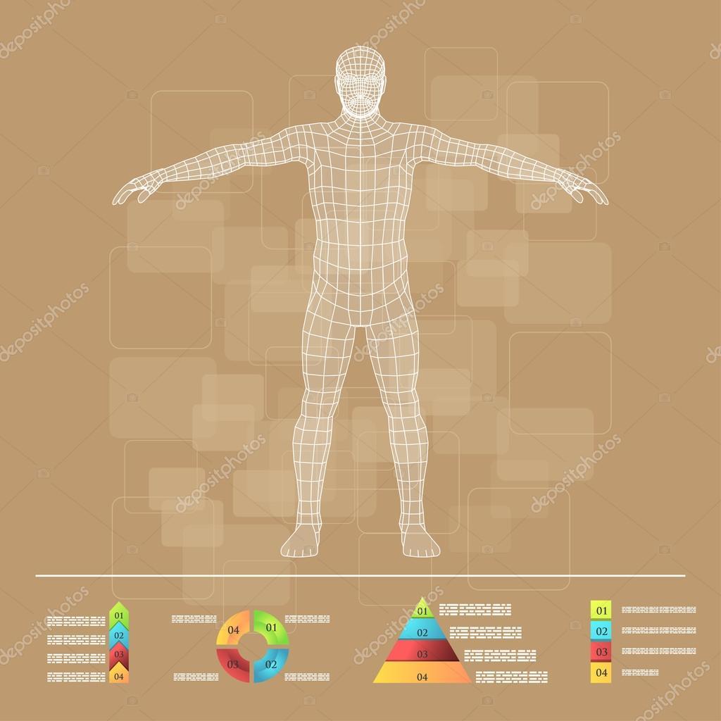 Schematische Darstellung des menschlichen Körpers — Stockvektor ...