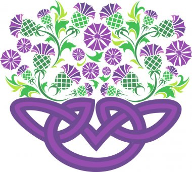 Celtic knot in the form of a basket with flowers thistle