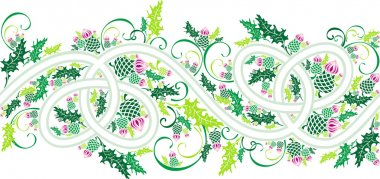 Border with celtic ornament and flowers thistle