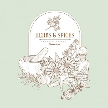 Herbs and Spices, Vector