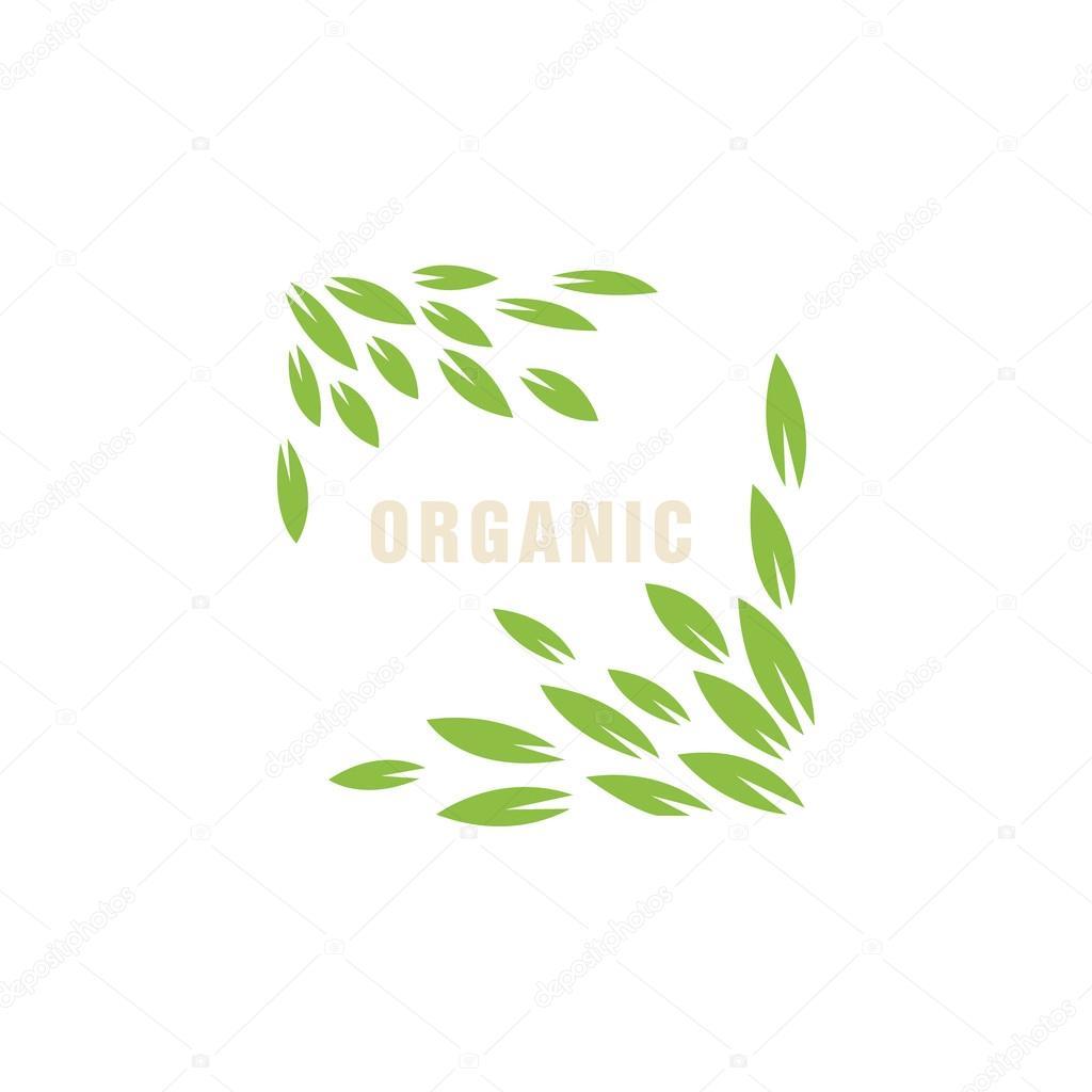 Cornice Foglia Senza Bordo Prodotto Biologico Logo Vettoriali