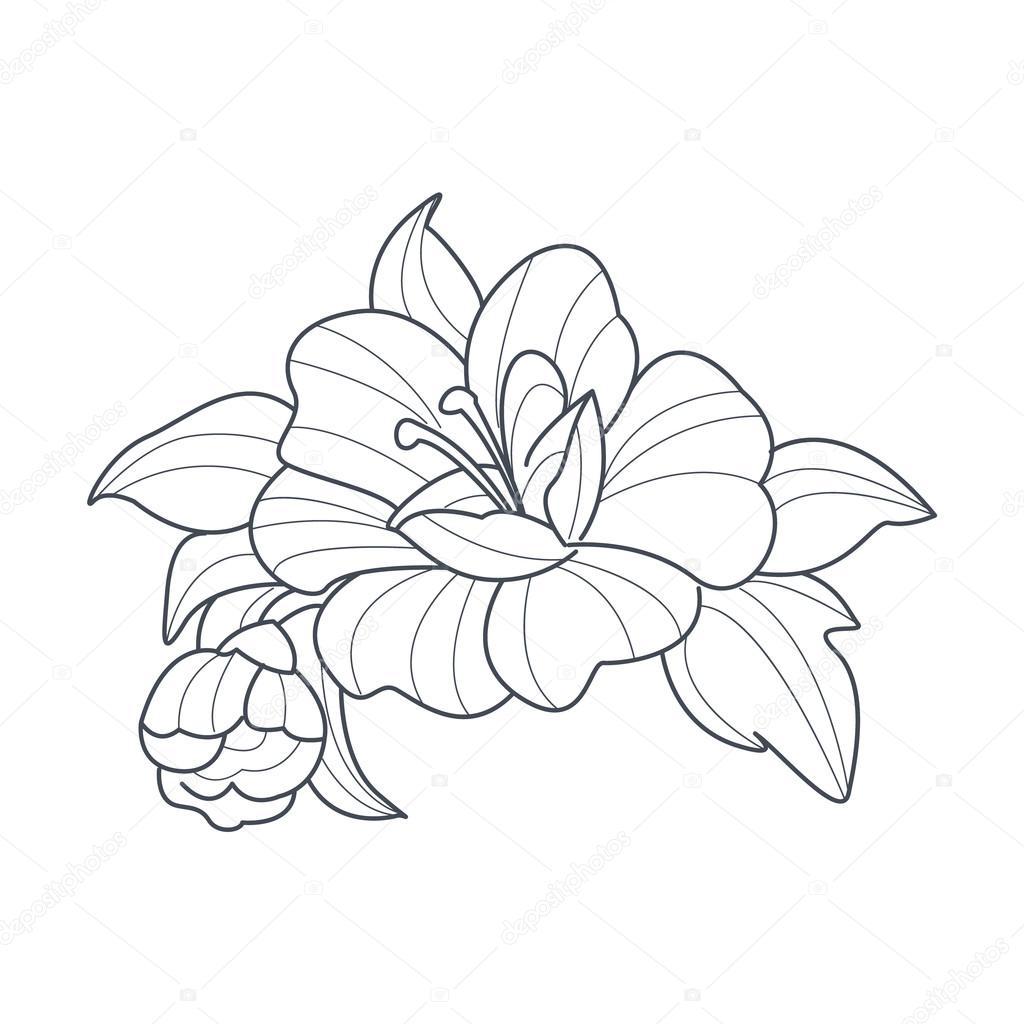 Boyama Kitabı Için Köpek Gül çiçek Tek Renkli çizimi Stok Vektör