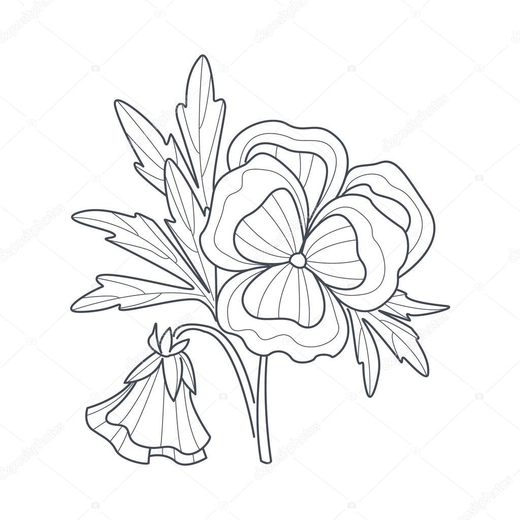 viooltje bloem zwart wit tekening voor coloring boek