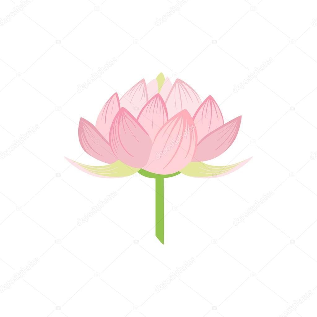 Padma Lotus Sacred Indian Flower Stock Vector Topvectors 119669970