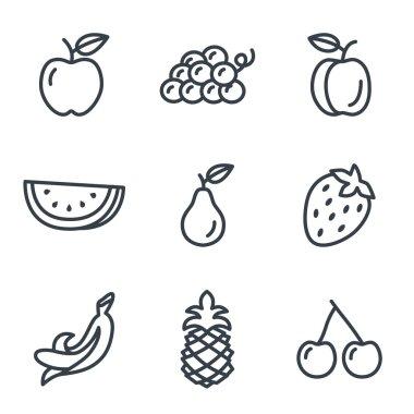 Fruit icons on white