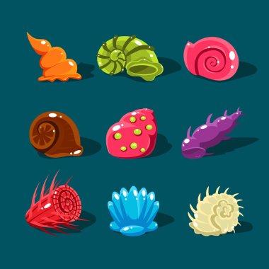 cartoon style sea shells