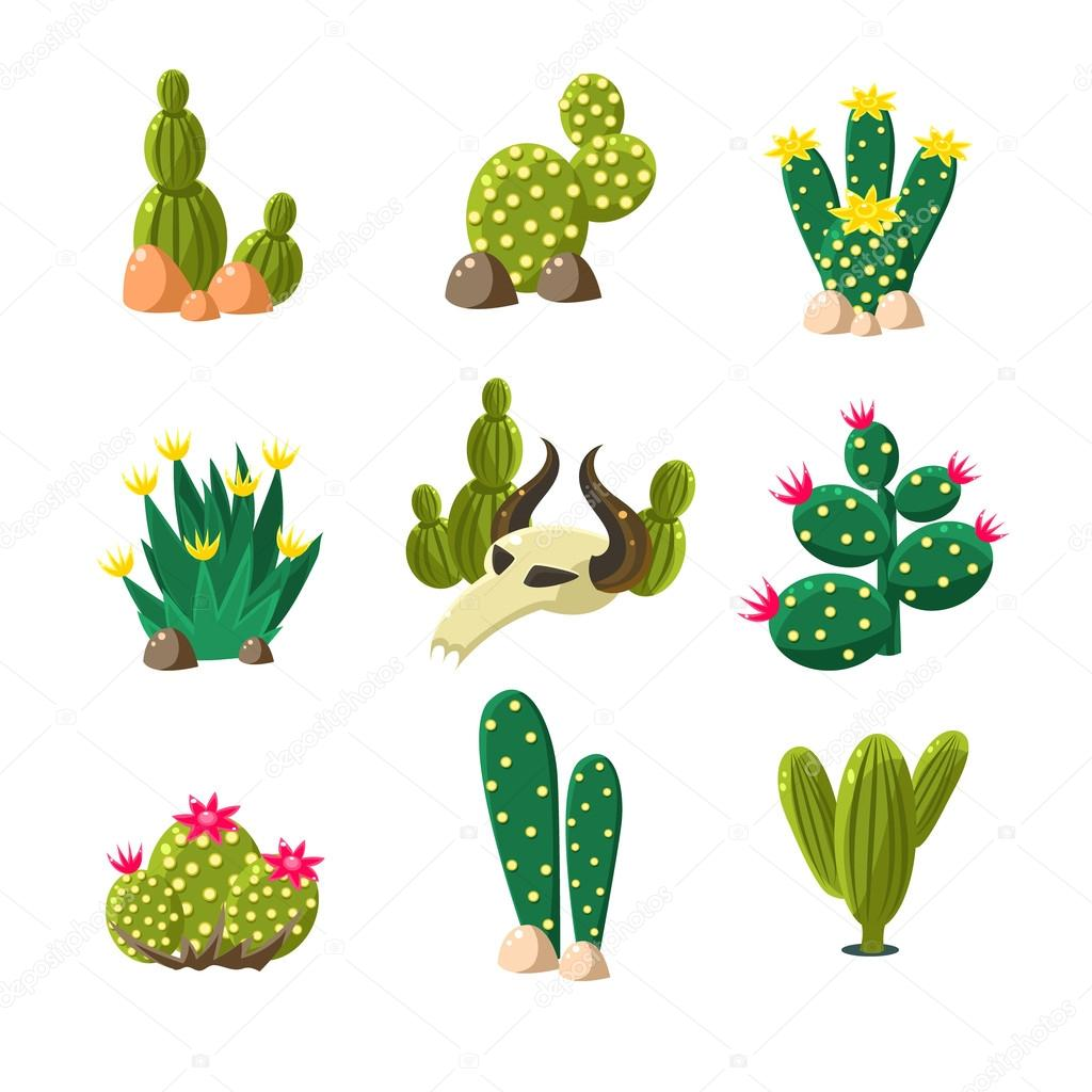 different types of cactus plants stock vector topvectors 85140908
