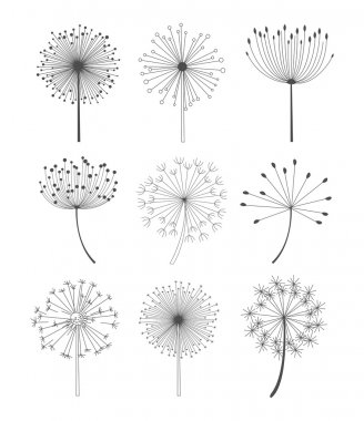 Black and White Dandelions Set Vector Illustration