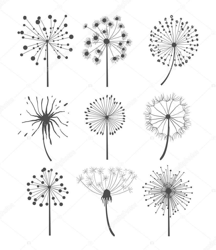 Monochrome Dandelion Set Vector Illustration
