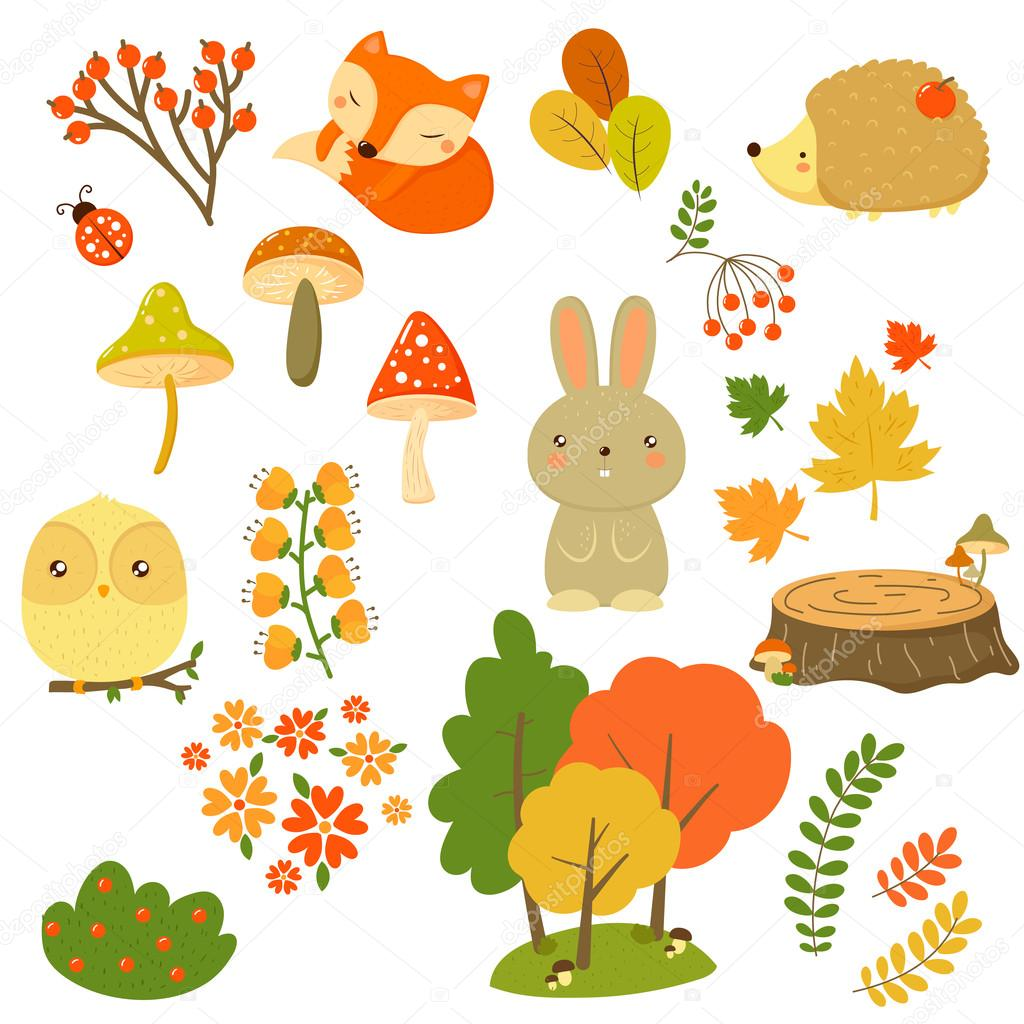 Autumn Forest Plants and Animals, Vector Illustration in Flat Style