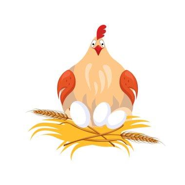 Hen in Nest Sitting on Eggs.