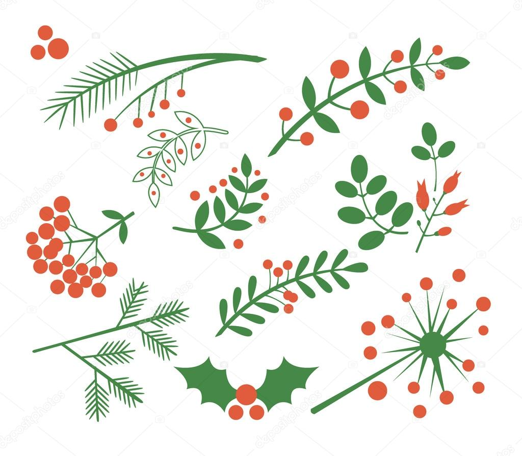 Red Berries, Fir and Leaves. Vector Illustration Set