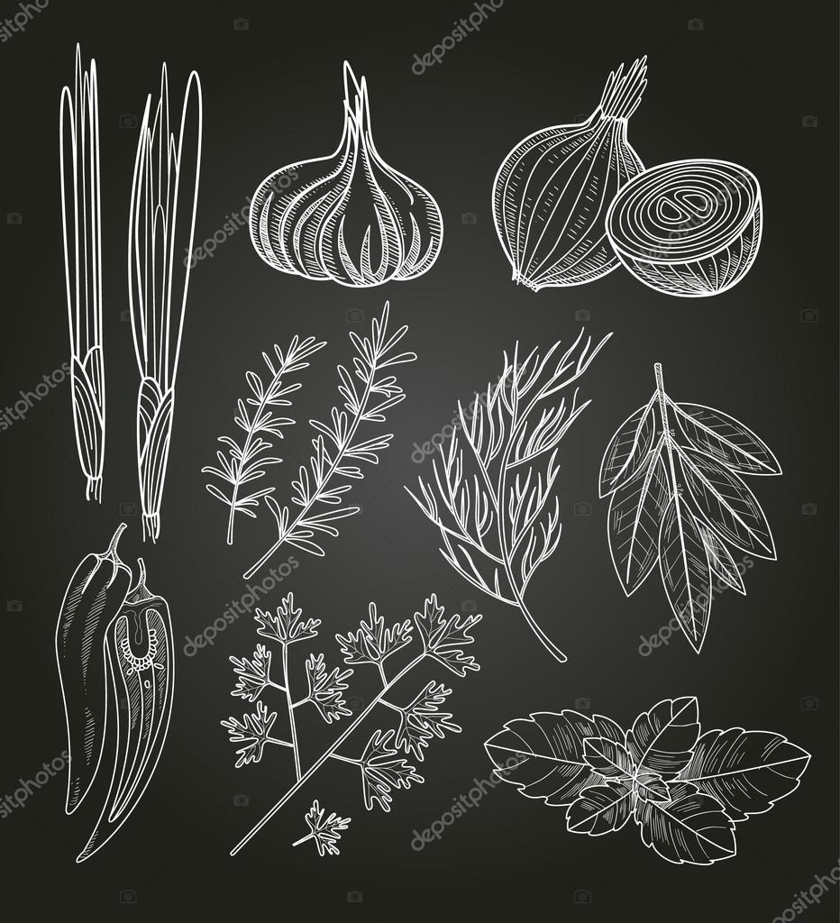 Culinary Herbs and Spices