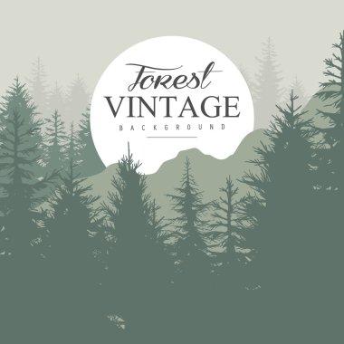 Vintage Pine Forest.