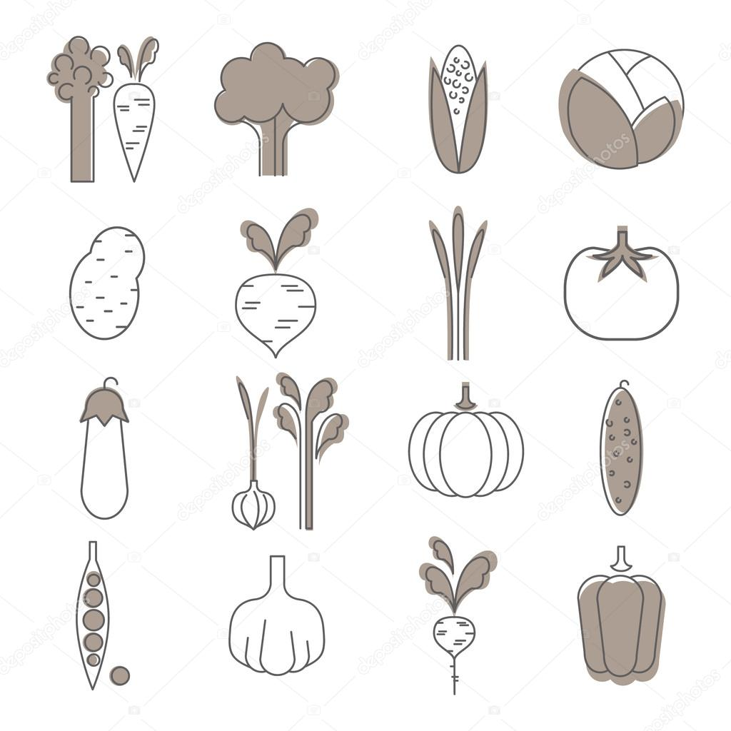 Simple Vegetable Set.