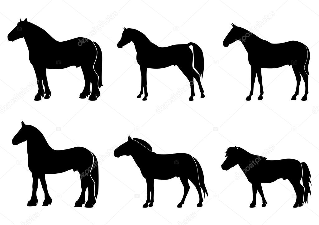 Illustration with horses