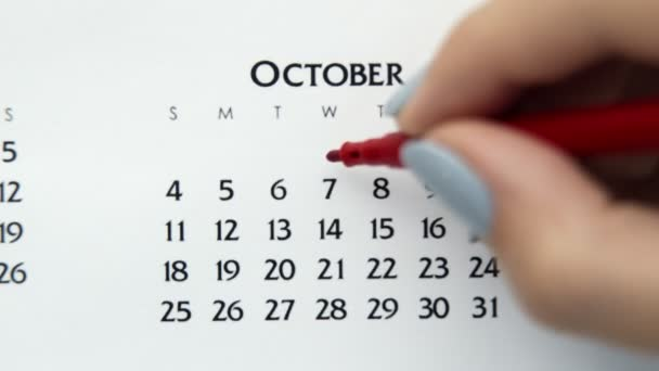 Female hand circle day in calendar date with a red marker. Business Basics Wall Calendar Planner and Organizer. October 7th