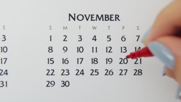 Female hand circle day in calendar date with a red marker. Business Basics Wall Calendar Planner and Organizer. November 13th