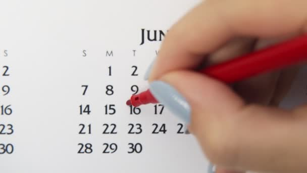 Female hand circle day in calendar date with a red marker. Business Basics Wall Calendar Planner and Organizer. June 16th