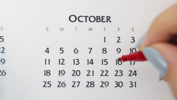 Female hand circle day in calendar date with a red marker. Business Basics Wall Calendar Planner and Organizer. October 16th