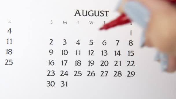 Female hand circle day in calendar date with a red marker. Business Basics Wall Calendar Planner and Organizer. August 4th