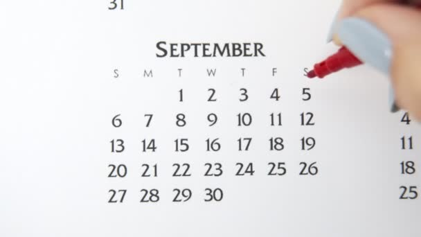 Female hand circle day in calendar date with a red marker. Business Basics Wall Calendar Planner and Organizer. September 5th