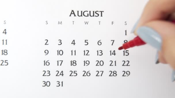 Female hand circle day in calendar date with a red marker. Business Basics Wall Calendar Planner and Organizer. August 14th