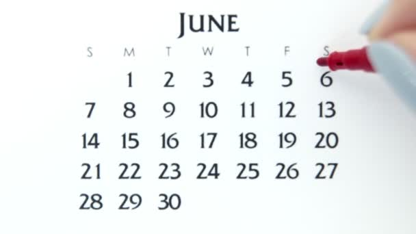 Female hand circle day in calendar date with a red marker. Business Basics Wall Calendar Planner and Organizer. June 6th