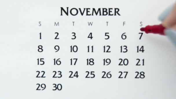 Female hand circle day in calendar date with a red marker. Business Basics Wall Calendar Planner and Organizer. November 7th