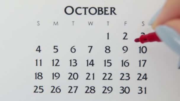 Female hand circle day in calendar date with a red marker. Business Basics Wall Calendar Planner and Organizer. October 10th