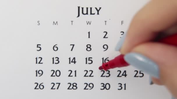 Female hand circle day in calendar date with a red marker. Business Basics Wall Calendar Planner and Organizer. July 23th