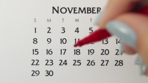 Samice kruh den v kalendářním datu s červenou značkou. Business Basics Wall Calendar Planner and Organizer. 24. listopadu