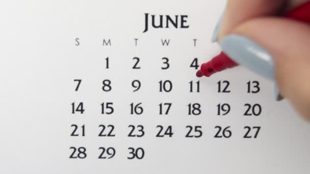 Female hand circle day in calendar date with a red marker. Business Basics Wall Calendar Planner and Organizer. June 11th