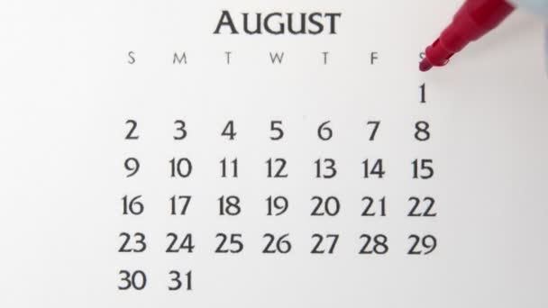 Female hand circle day in calendar date with a red marker. Business Basics Wall Calendar Planner and Organizer. August 1th