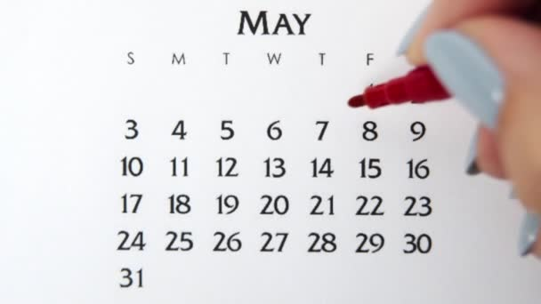 Female hand circle day in calendar date with a red marker. Business Basics Wall Calendar Planner and Organizer. May 7th