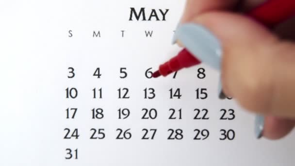 Female hand circle day in calendar date with a red marker. Business Basics Wall Calendar Planner and Organizer. May 13th