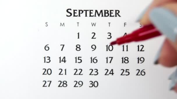 Female hand circle day in calendar date with a red marker. Business Basics Wall Calendar Planner and Organizer. September 23th