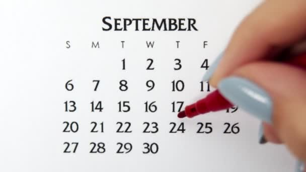 Female hand circle day in calendar date with a red marker. Business Basics Wall Calendar Planner and Organizer. September 24th