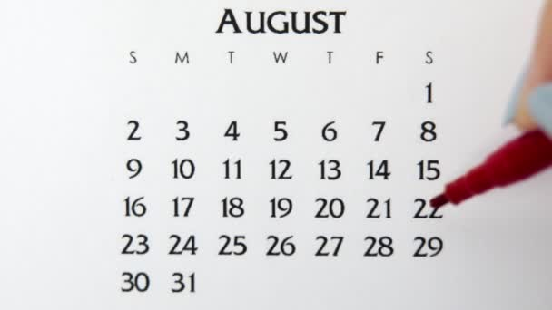 Female hand circle day in calendar date with a red marker. Business Basics Wall Calendar Planner and Organizer. August 29th