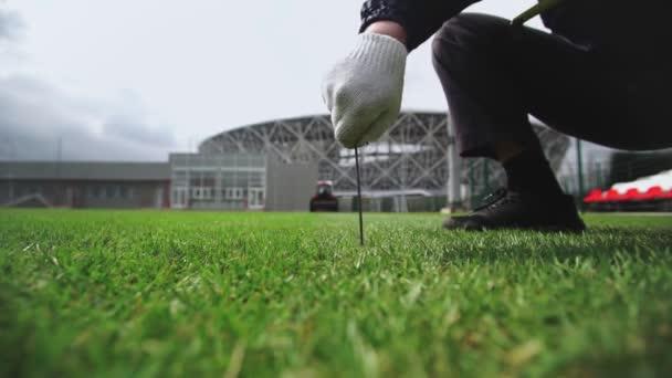 Worker checks lawn grass in a football stadium