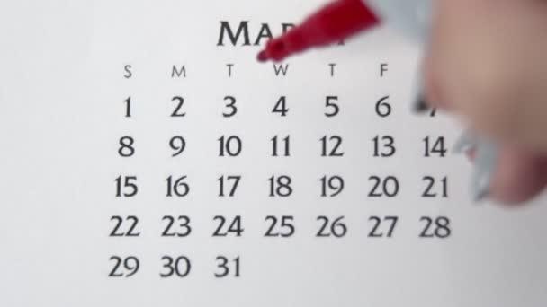 Samice kruh den v kalendářním datu s červenou značkou. Business Basics Wall Calendar Planner and Organizer. 3. března
