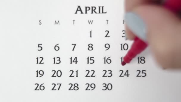 Female hand circle day in calendar date with a red marker. Business Basics Wall Calendar Planner and Organizer. APRIL 24th