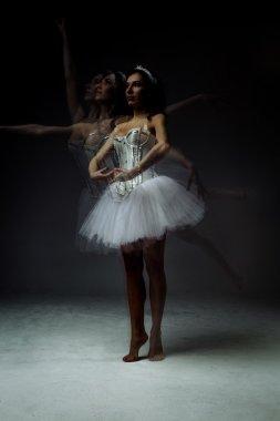 Female classic ballet dancers posing stock vector