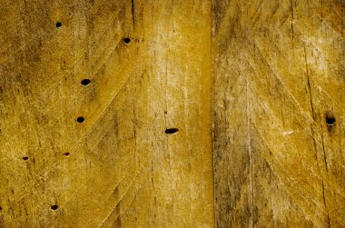 Old wood damaged by borers
