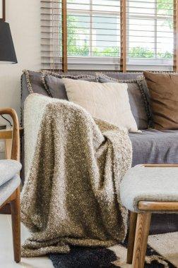 Brown blanket on sofa in living room