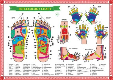 Foot and Hand reflexology chart
