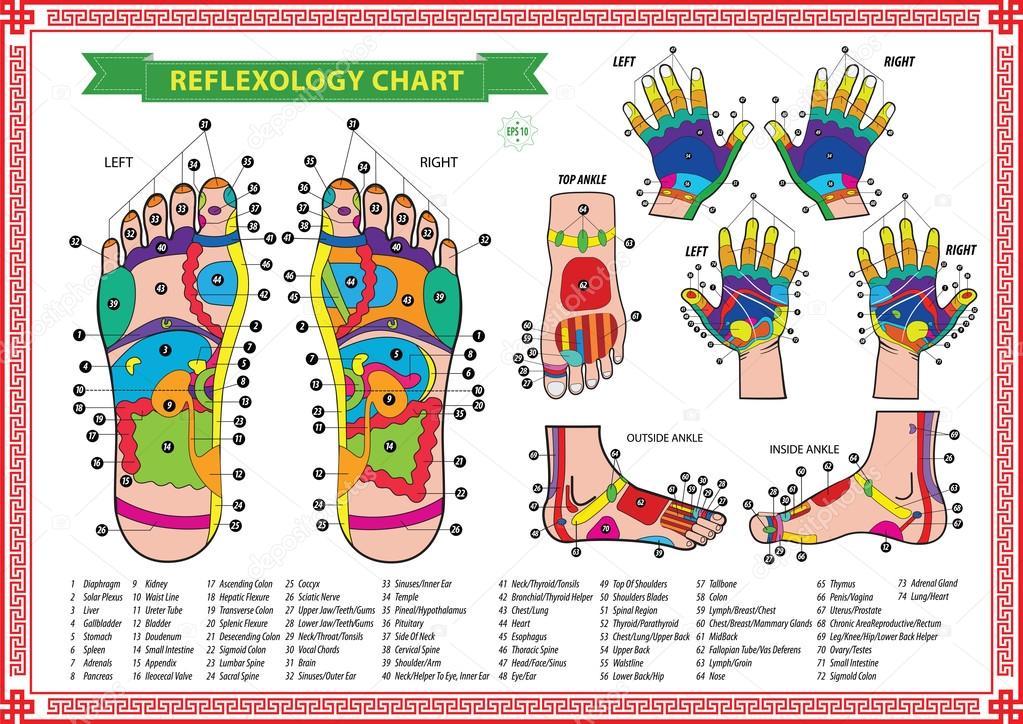 reflexologi