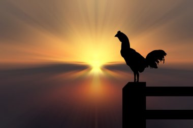 Chicken silhouette sunrise background